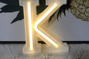Outdoor advertising custom neon sign acrylic led neon sign light signs letters for decor home or bar